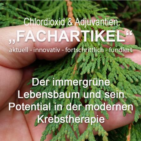 Fachartikel – Der immergrüne Lebensbaum und sein Potential in der modernen Krebstherapie
