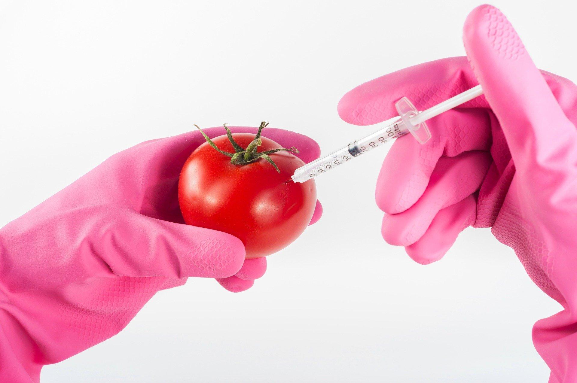 Pandemie verhaltensverändernder Hirnschädigungen durch Giftstoffe